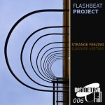DRChill006 by Flashbeat Project / Strange Feeling